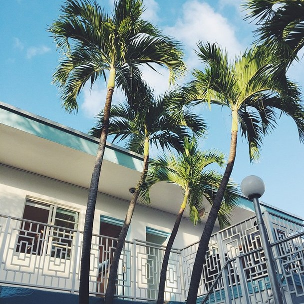 "@Lizzyvdligt: ""I can't get enough of this #miami #architecture #palmtrees #southbeach"""