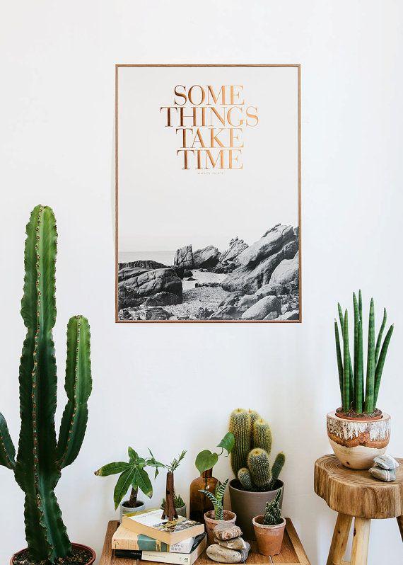 De beste planten voor in jouw huis
