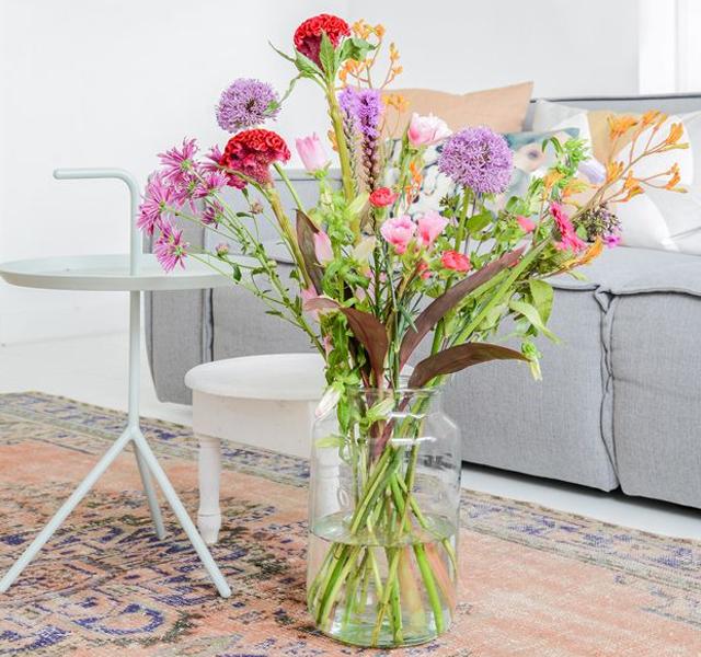 De beste planten voor in jouw huis3