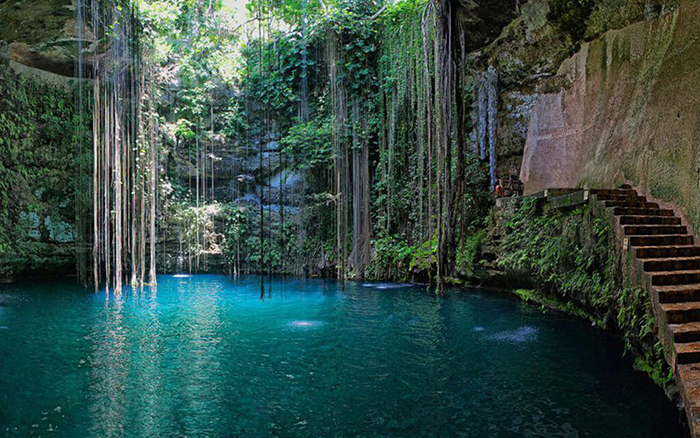 Zwemmen in de natuur: Cenote Ik Kil